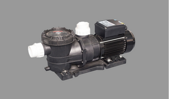 DXD-310EM Swimming Pool Bath Pump