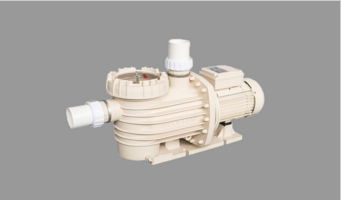 DXD-320ZM Swimming Pool Bath Pump 2.0HP