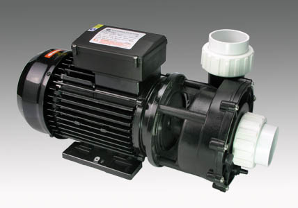 WP-200II Dual SPEED SPA Pool Pump 2HP
