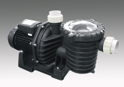 Dual Speed pump SPA Swimming pool 2.5HP